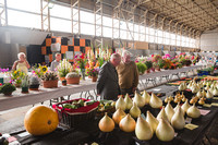Crafts & Horticulture 2015